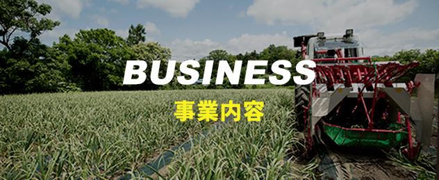 にんにく専門農家 農業生産法人株式会社よしだや 事業内容
