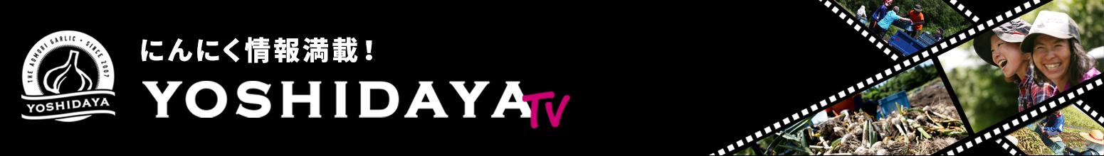 にんにくの栽培方法・育て方を動画で紹介!YOSHIDAYA TV
